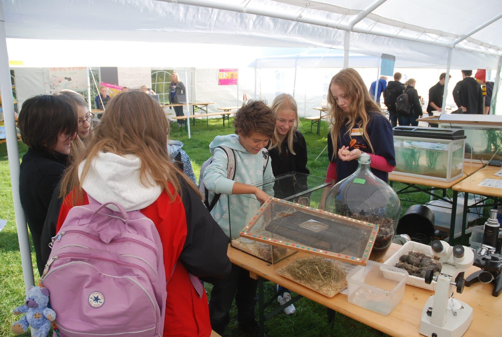 Naturvidenskabsfestival